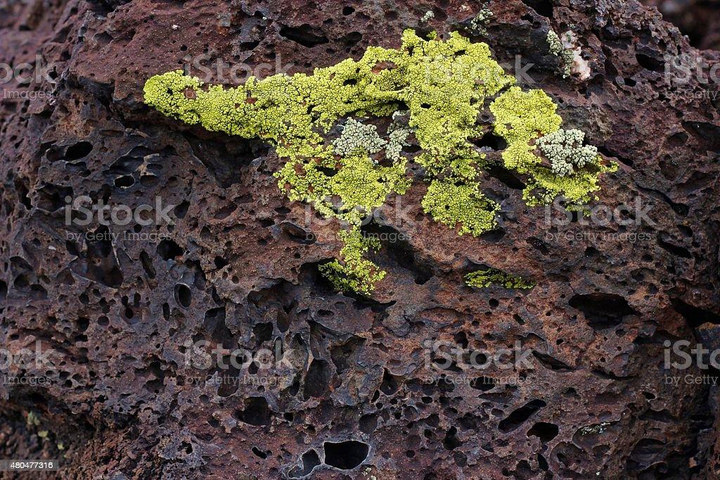 Lava Rock Close-up stock photo