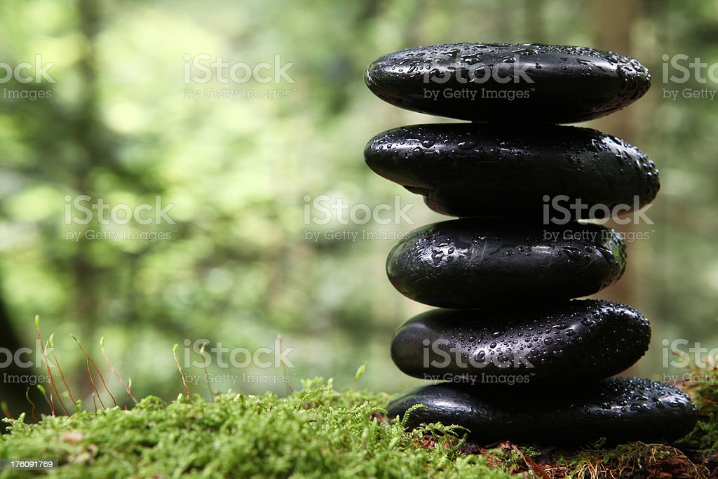 Lava stones in the forest royalty-free stock photo
