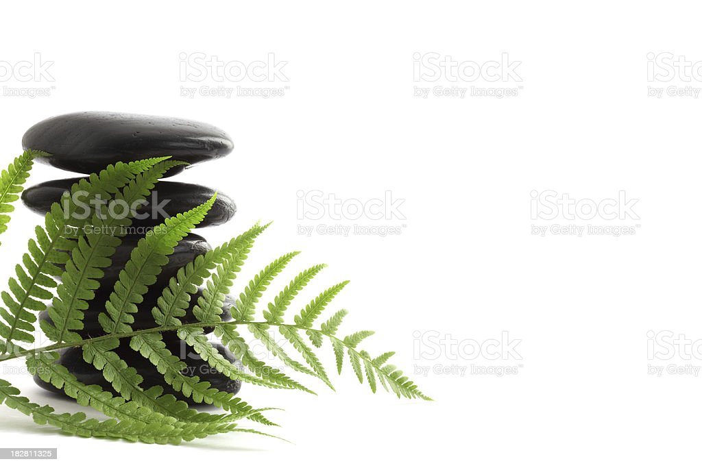 Lava Stones with Fern Leaves XXXL royalty-free stock photo