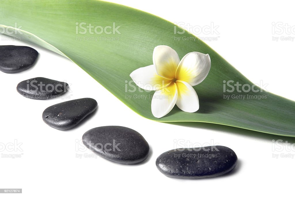Lava Stones with frangipani (plumeria)  flower on the Leaves royalty-free stock photo
