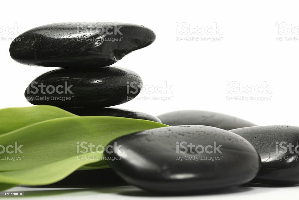 Lava Stones with Green Leaves royalty-free stock photo