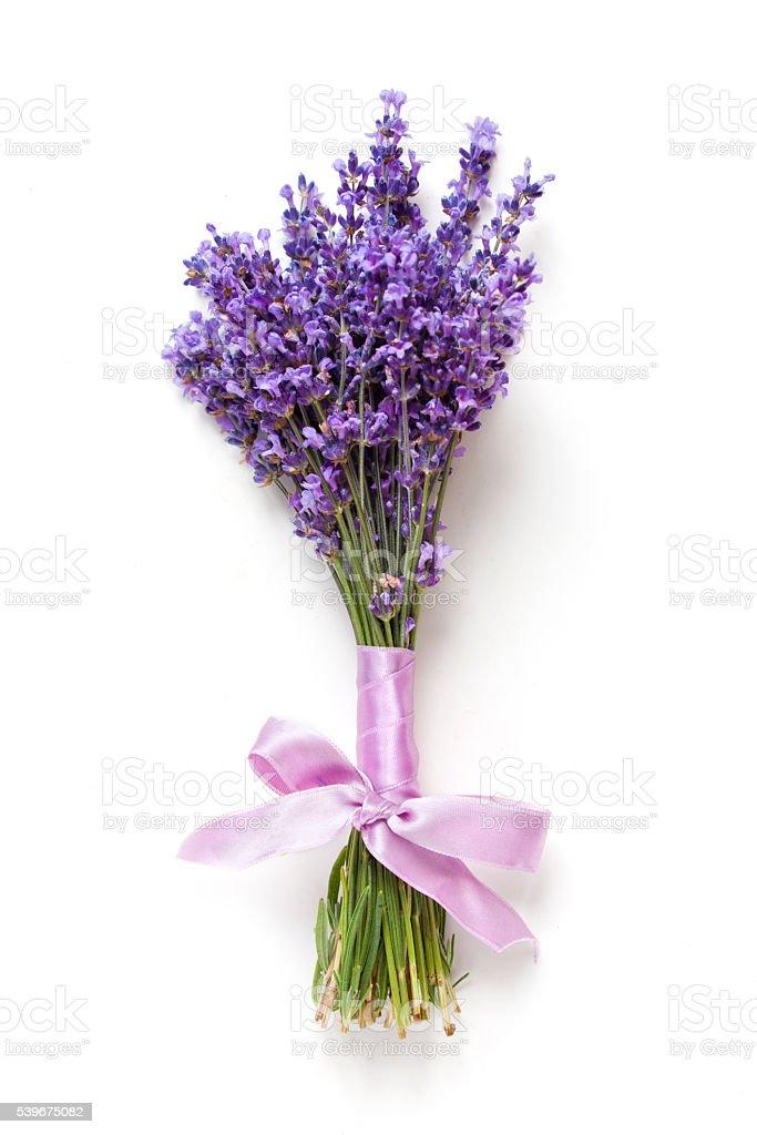 bouquet de fleurs de lavande sur fond blanc - Photo