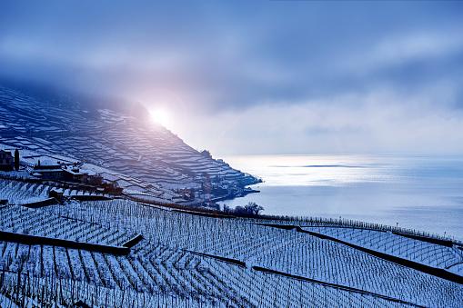 Lavaux Vineyards at Winter Sunrise, Switzerland