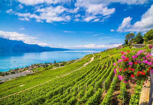 Lavaux wine region at Lake Geneva, Switzerland