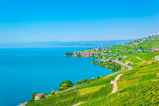 Lavaux wine region near Lausanne, Switzerland