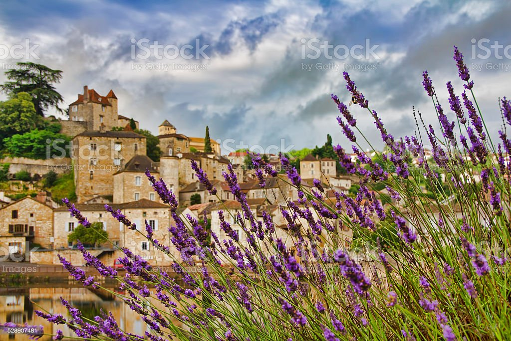 Lavender at Puy-l'Eveque stock photo