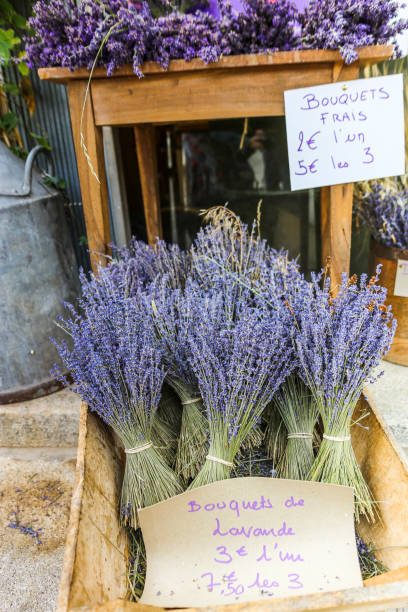 lavender bouquets for sale on a french street. Bundled dried lavender sold in a wooden crate stock photo