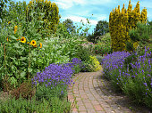 Beautiful Gothenburg garden with colorful flowerbeds.