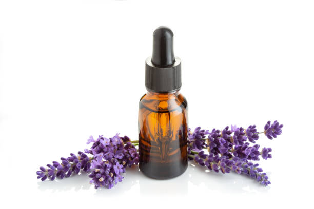 Lavender essential oil isolated on white stock photo
