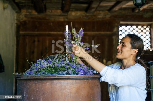 The peak оf the lavender essential oil production. Distillation process and extraction of the essential oil.