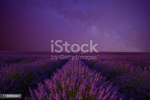 Lavender field at night under the milky way summer night sky Provence France