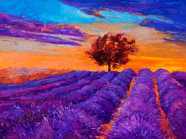lavender fields - farbfeldmalerei stock-fotos und bilder