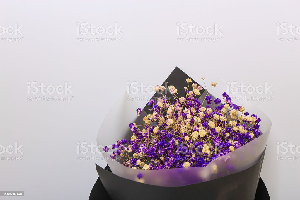 lavender flowers on a white background stock photo