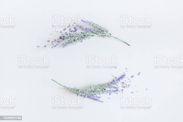 Lavender flowers on pastel gray background flat lay top view picture id1009855196?b=1&k=6&m=1009855196&s=612x612&h=ifv84umup3s l5ntpuebnufojdrjpm7hztntwhs4se4=