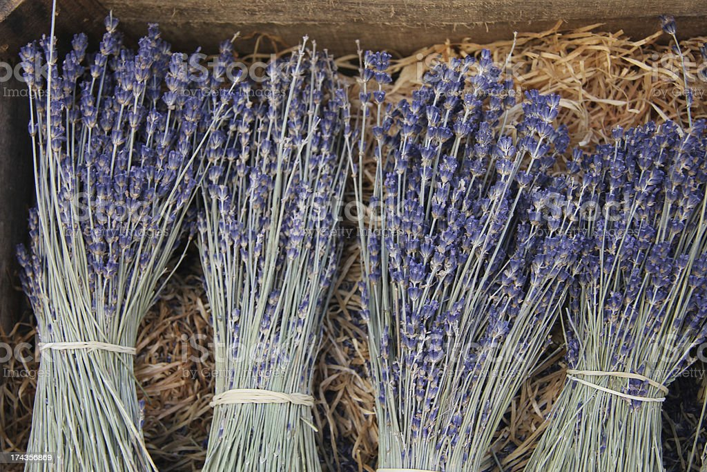 Lavender for sale royalty-free stock photo