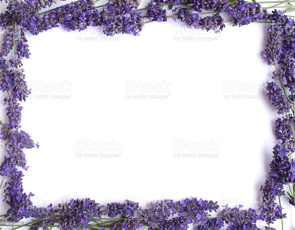 Lavender Frame Stock Photo & More Pictures of Alternative Medicine ...