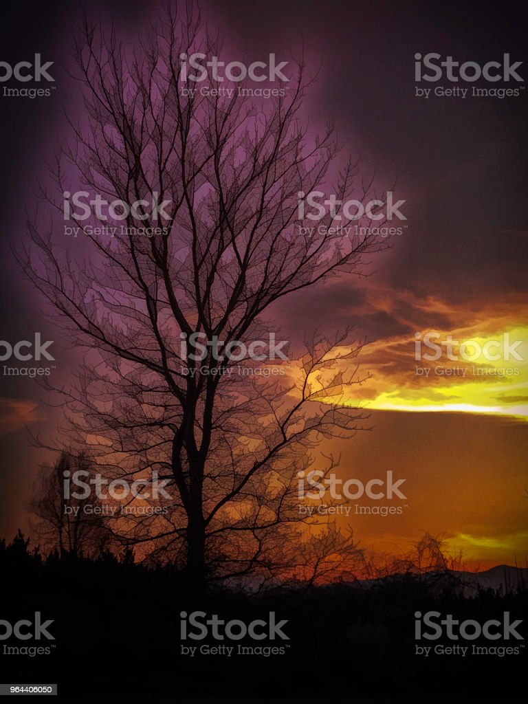 Lavendel Glow digitale kunst - Royalty-free Avondschemering Stockfoto
