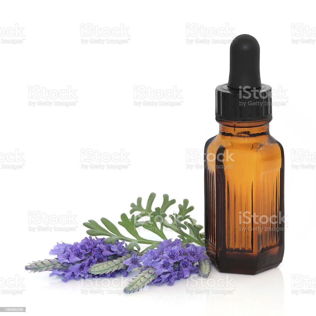 Lavender Herb Flower Therapy stock photo