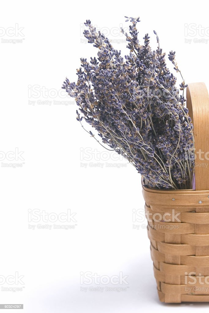 Lavender in a Basket royalty-free stock photo