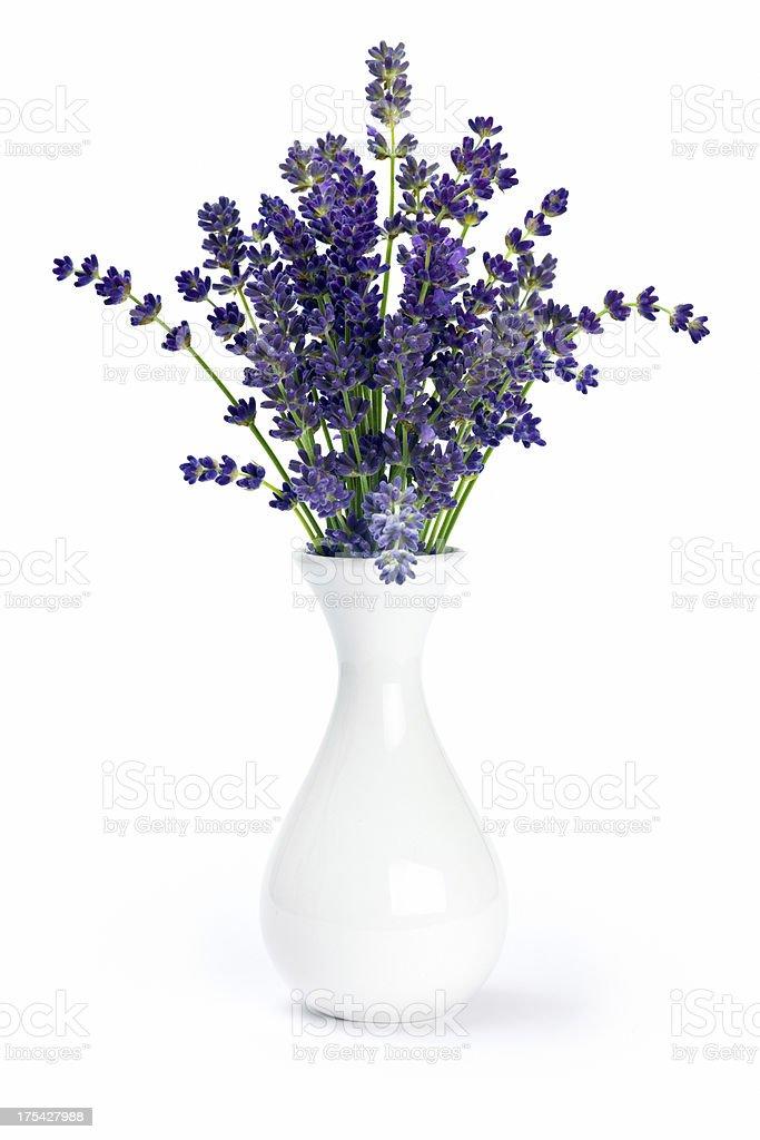 Lavendel in Vase. – Foto