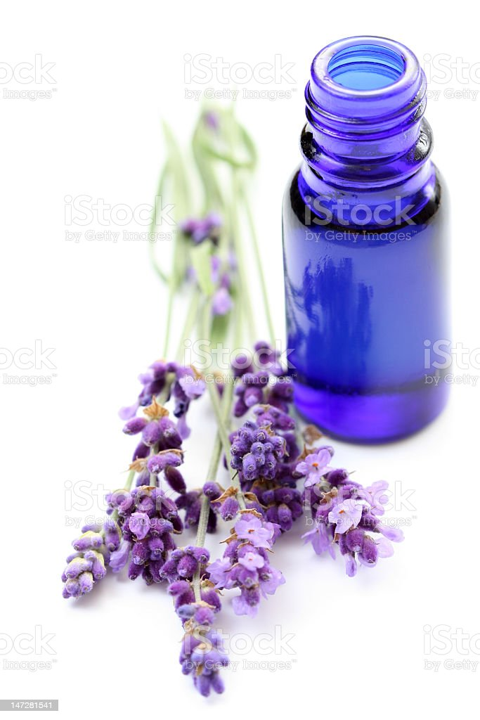 Lavender next to a blue essential oil bottle stock photo