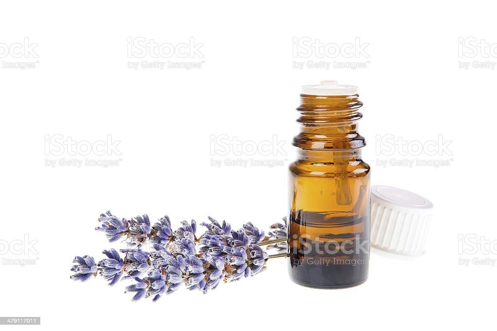 lavender oil stock photo