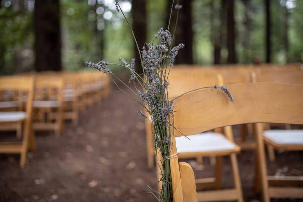 lavendel auf stuhl bei leeren hochzeitszeremonie - redwood hochzeit stock-fotos und bilder