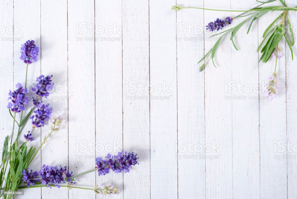 Lavender on white wooden – Foto