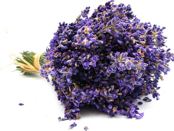 Lavender picture id117451321?b=1&k=6&m=117451321&s=612x612&w=0&h=7efglijkep8zfylfuxwqpcrluuzfiendotssle gkkc=