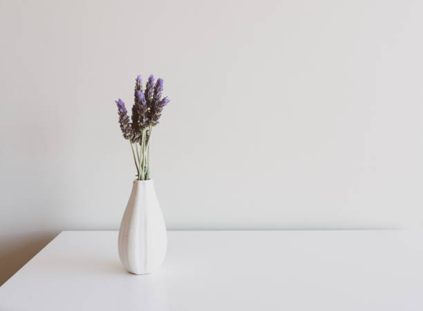 Lavender sprigs in small white vase on table stock photo