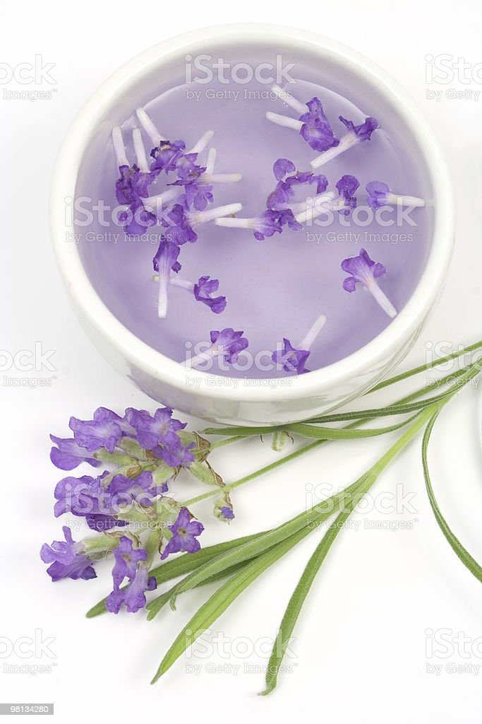 Lavender tincture for aromatherapy royalty-free stock photo