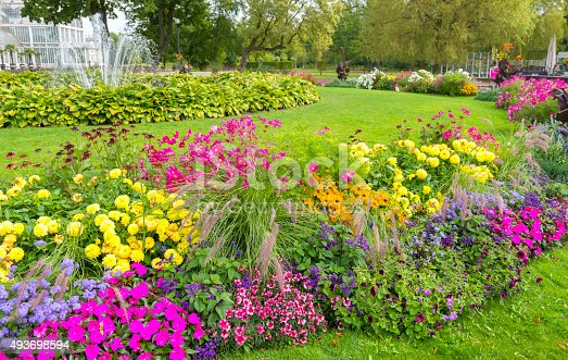 Beautiful and colorful flowerbed in Gothenburg city garden.