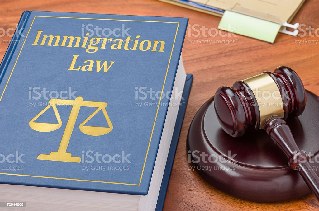 Law book with a gavel - Immigration law stock photo