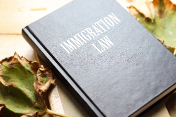law book with immigration law word on table - supreme court стоковые фото и изображения