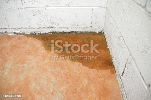 A basement that begins to filter water from the wall to the ground