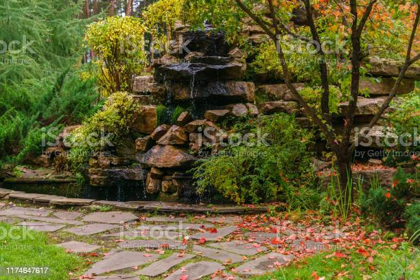 Photo of lawn among decorative bushes with a path and artificial rock with waterfall