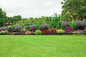 istock Lawn and Formal Garden 157672314
