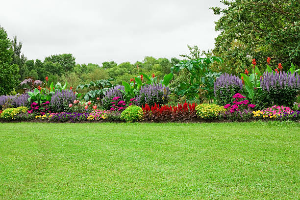 Lawn and Formal Garden Green lawn and landscaped formal garden. grounds stock pictures, royalty-free photos & images