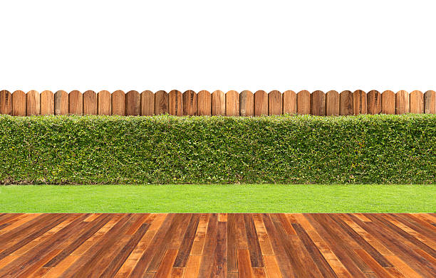 lawn and wooden floor with hedge - fence stock photos and pictures