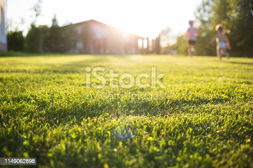 lawn at home. running children in blur. On a Sunny summer day