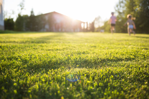 lawn at home. running children in blur. On a Sunny summer day. lawn at home. running children in blur. On a Sunny summer day grounds stock pictures, royalty-free photos & images