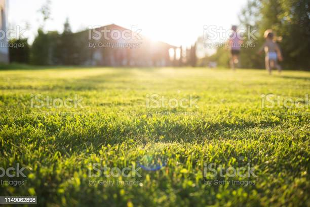 Photo of lawn at home. running children in blur. On a Sunny summer day.