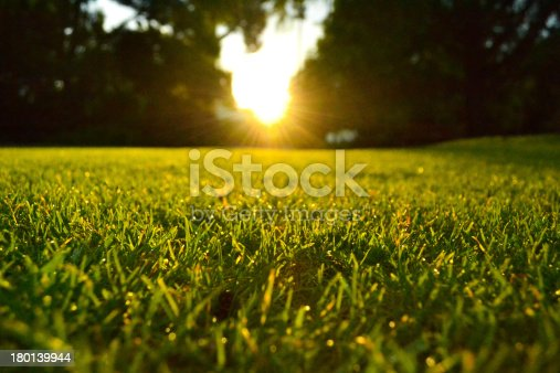 istock Lawn at sunset 180139944