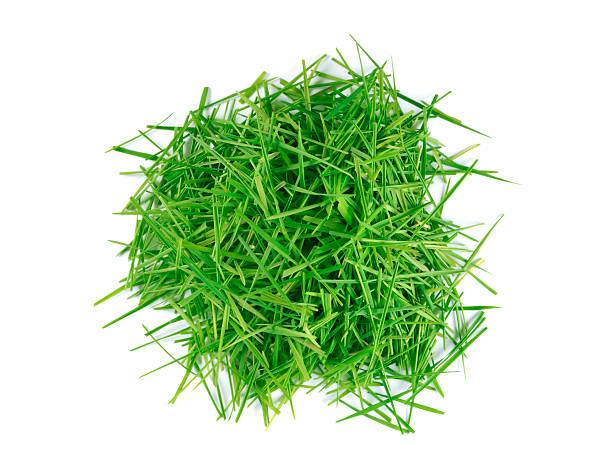 ritagli su prato - grass isolated foto e immagini stock