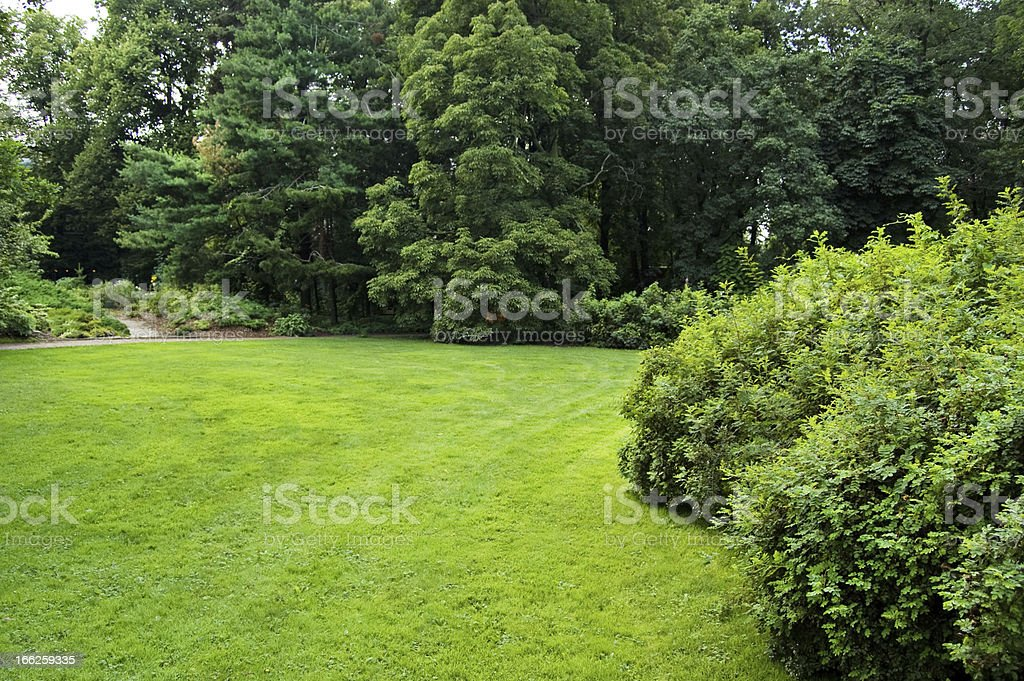 Lawn in a botanical garden royalty-free stock photo