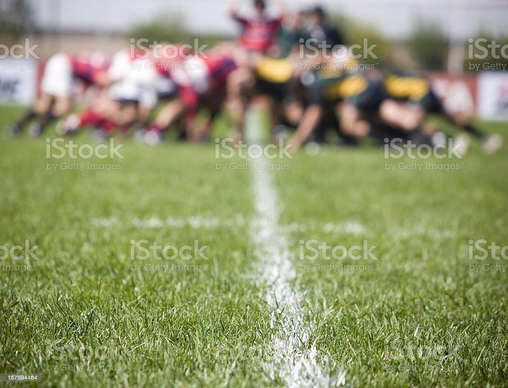 Lawn in a Field stock photo