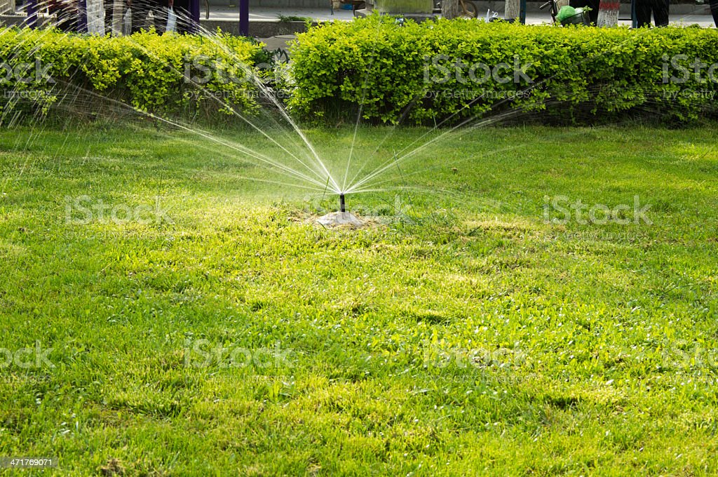 Lawn Irrigation stock photo