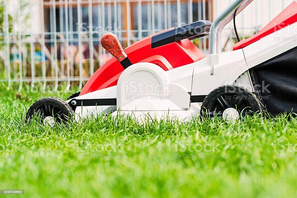 Lawn mower cutting green grass in garden. stock photo