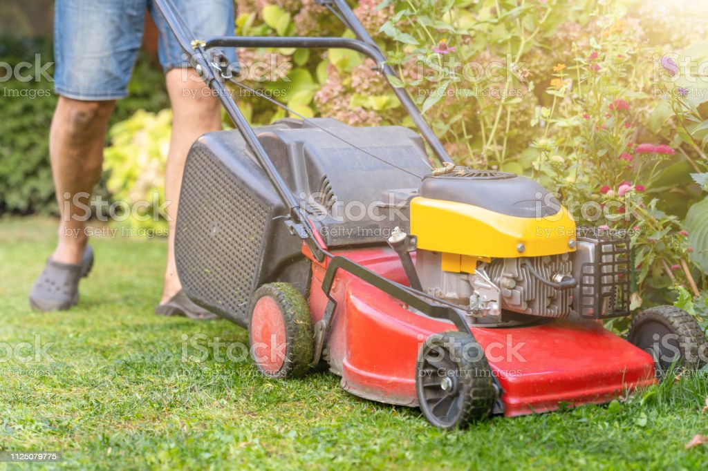 Lawn mower in the back yard mowing grass