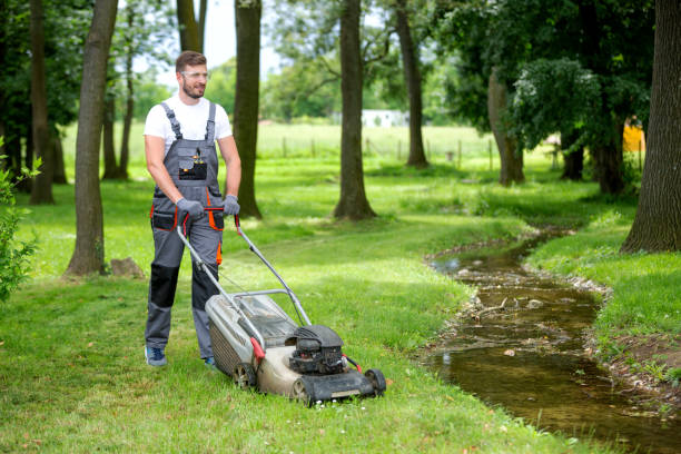 Lawn mower keeping grass level and height in order stock photo